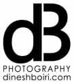 Logo Dinesh Boiri